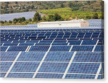 Photovoltaic Panels At Beneixama Canvas Print by Ashley Cooper