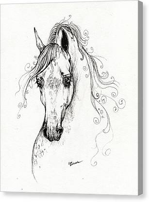 Piaff Polish Arabian Horse Drawing Canvas Print by Angel  Tarantella