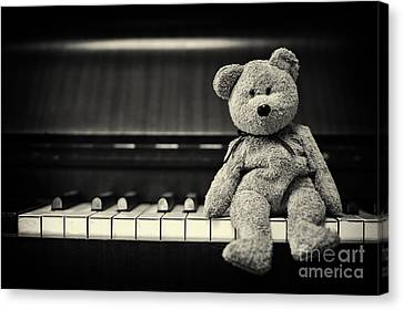 Piano Bear Canvas Print