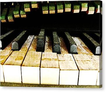 Piano Keyboard Canvas Print by Randi Kuhne