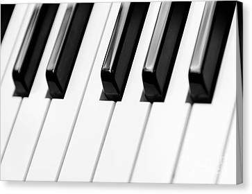 Piano Canvas Print by Svetlana Sewell