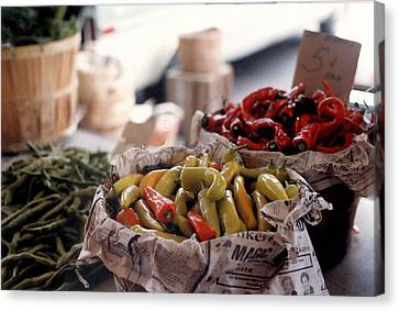 Pick A Pepper In Watercolor Canvas Print by Suzanne Gaff