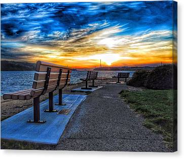Pick Your View Canvas Print by Brian Maloney