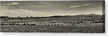 Picketts Charge From Seminary Ridge In Black And White Canvas Print by Joshua House
