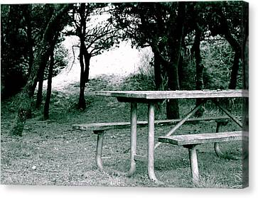 Picnic Blues  Canvas Print by Sheldon Blackwell