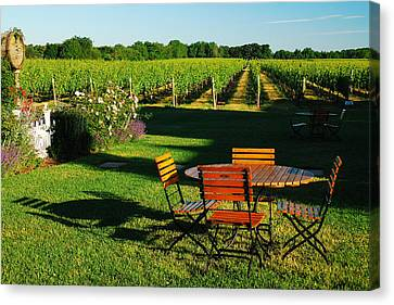 Picnic In The Vineyard Canvas Print by James Kirkikis