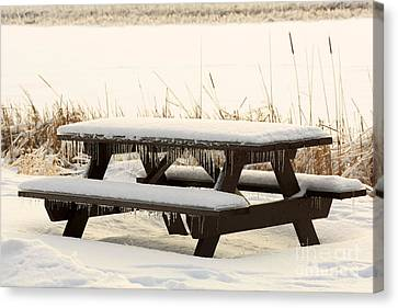 Picnic Table In Winter Canvas Print by Louise Heusinkveld