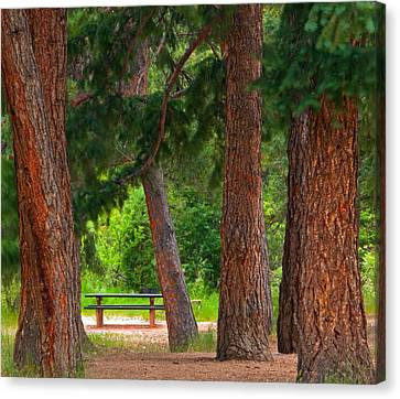 Canvas Print featuring the photograph Picnic Time  by Eric Rundle