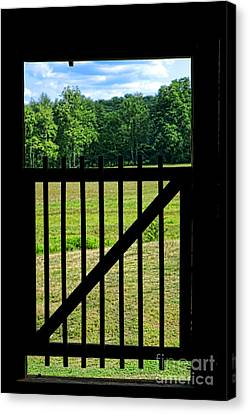 Picture Gate  Canvas Print by Olivier Le Queinec