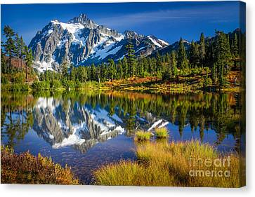 North Cascades Canvas Print - Picture Lake by Inge Johnsson