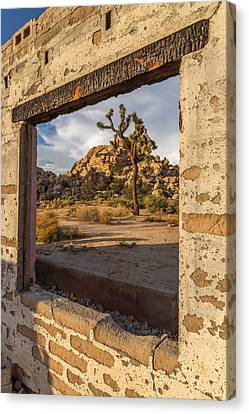 Picture Window Canvas Print by Peter Tellone
