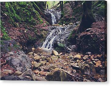 Falling Water Creek Canvas Print - Picturesque by Laurie Search