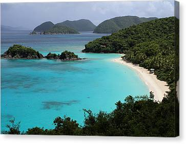 Piece Of Paradise Canvas Print by Fiona Kennard