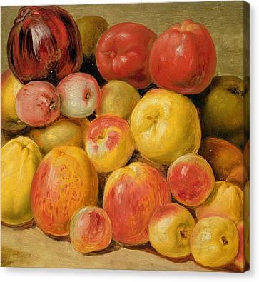 Pieces Of Fruit  Canvas Print by Johann Heinrich Wilhelm Tischbein