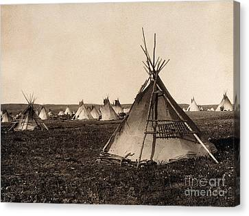 Piegan Indian Tipis, C. 1900 Canvas Print by Wellcome Images