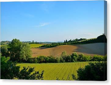 Alberi Canvas Print - Piemont Hills by Irene Carrea