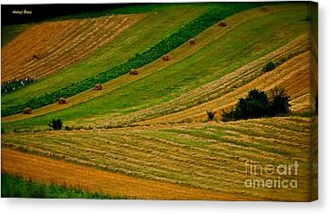 Pieniny Mountains - Pages Of My Diary. 14th August 2013. Canvas Print by  Andrzej Goszcz
