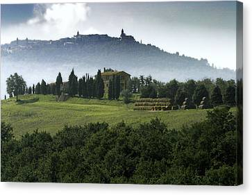 Pastoral Vineyard Canvas Print - Pienza Tuscany by Al Hurley