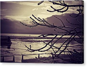 Pier Thru The Tree Canvas Print by Dawdy Imagery