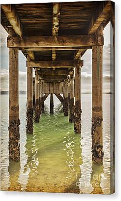 Auckland Canvas Print - Pier Under 2 by Colin and Linda McKie