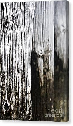 Pier Wood Canvas Print