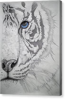 Piercing II Canvas Print