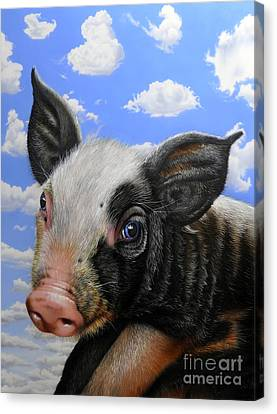 Pig In The Sky Canvas Print by Jurek Zamoyski