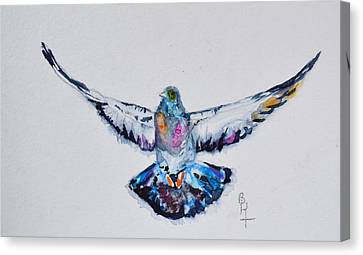 Pigeon In Flight Canvas Print by Beverley Harper Tinsley