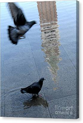 Pigeons In Piazza San Marco. Venice. Italy. Canvas Print by Bernard Jaubert