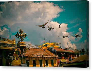 Pigeons Near Monastery In Boudnath Kathmandu Canvas Print by Raimond Klavins