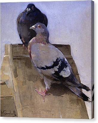 Pigeons On The Roof Canvas Print by Joseph Crawhall