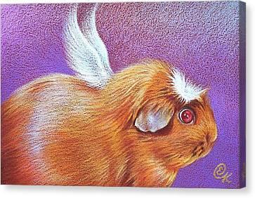 Cavy Canvas Print - Piggie Angel by Elena Kolotusha