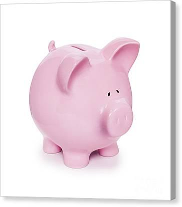 Piggy Bank Canvas Print - Piggy Bank  by Colin and Linda McKie