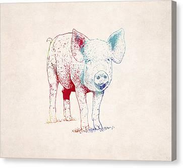 Piglet Illustration Drawing Canvas Print