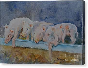 Piglets Canvas Print by Betty Mulligan