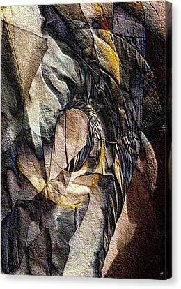 Pigmented Sandstone Canvas Print