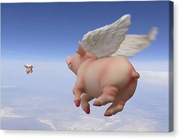 Pigs Fly 2 Canvas Print by Mike McGlothlen