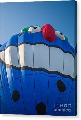 Piko The Hot Air Balloon Canvas Print by Edward Fielding
