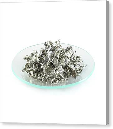 Pile Of Tin Granules Canvas Print by Science Photo Library