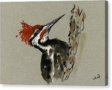 Pacific Coast States Canvas Print - Pileated Woodpecker by Juan  Bosco