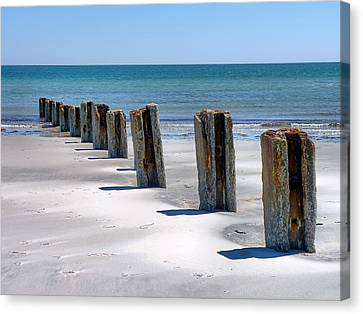 Pilings Canvas Print by Janice Drew