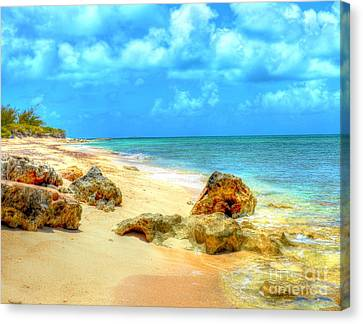 Pillory Beach Canvas Print by Debbi Granruth