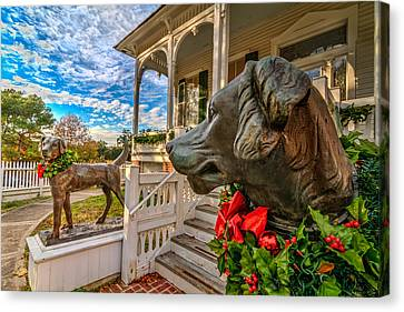 Pillot House Dogs Canvas Print by Tim Stanley