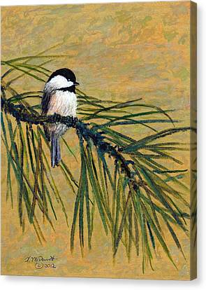 Canvas Print featuring the painting Pine Branch Chickadee Bird 1 by Kathleen McDermott