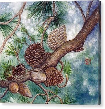 Pine Cone Canvas Print by Tomoko Koyama