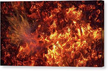 Pine Cones Burning In A Forest Fire Canvas Print