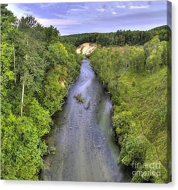 Pine River Canvas Print