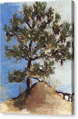 Pine Tree Canvas Print by Cristel Mol-Dellepoort