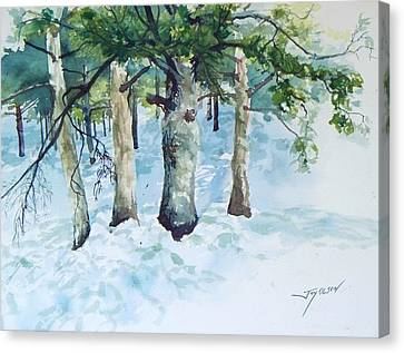 Pine Trees And Snow Canvas Print by Joy Nichols