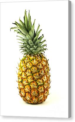 Pineapple Canvas Print by Blink Images